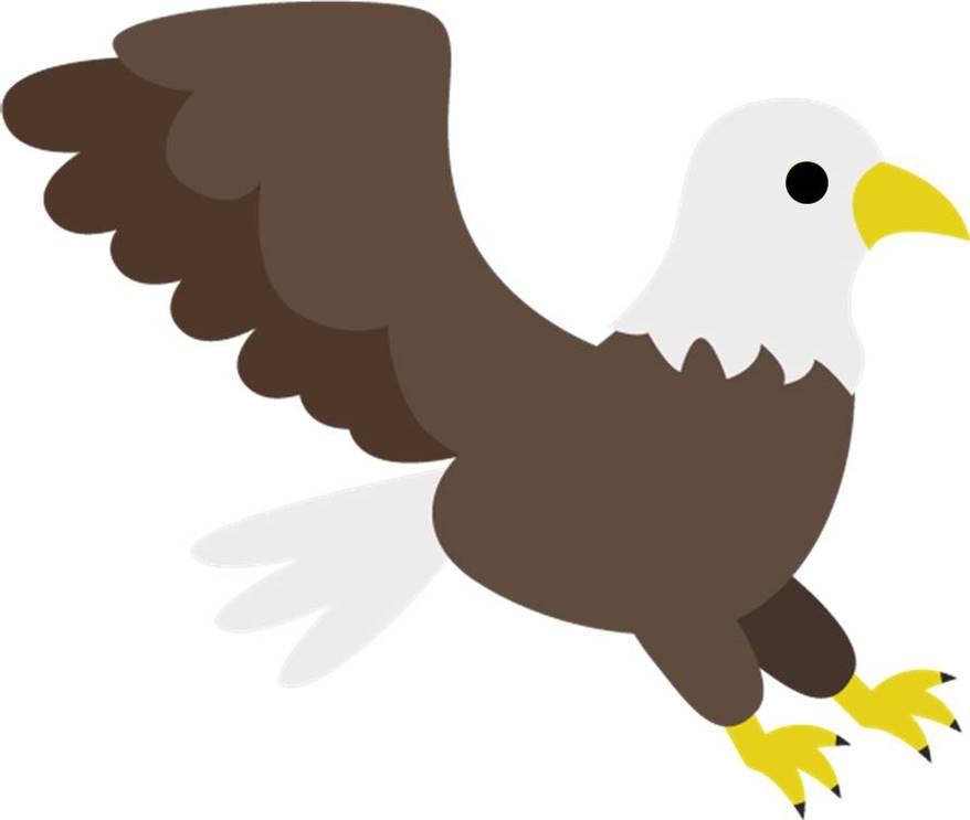Tirivia Hawk